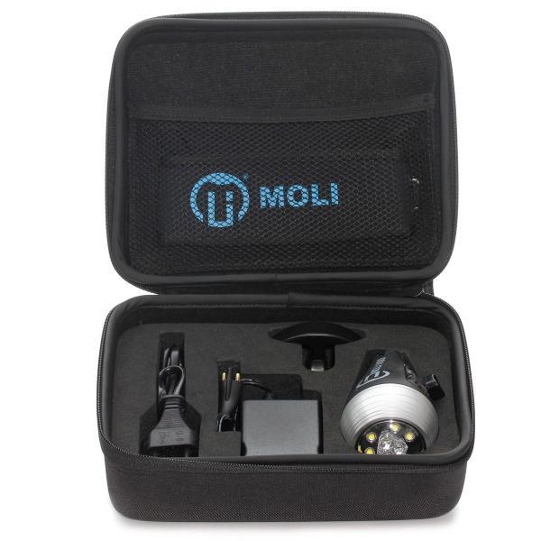 MOLI P.O.V Case